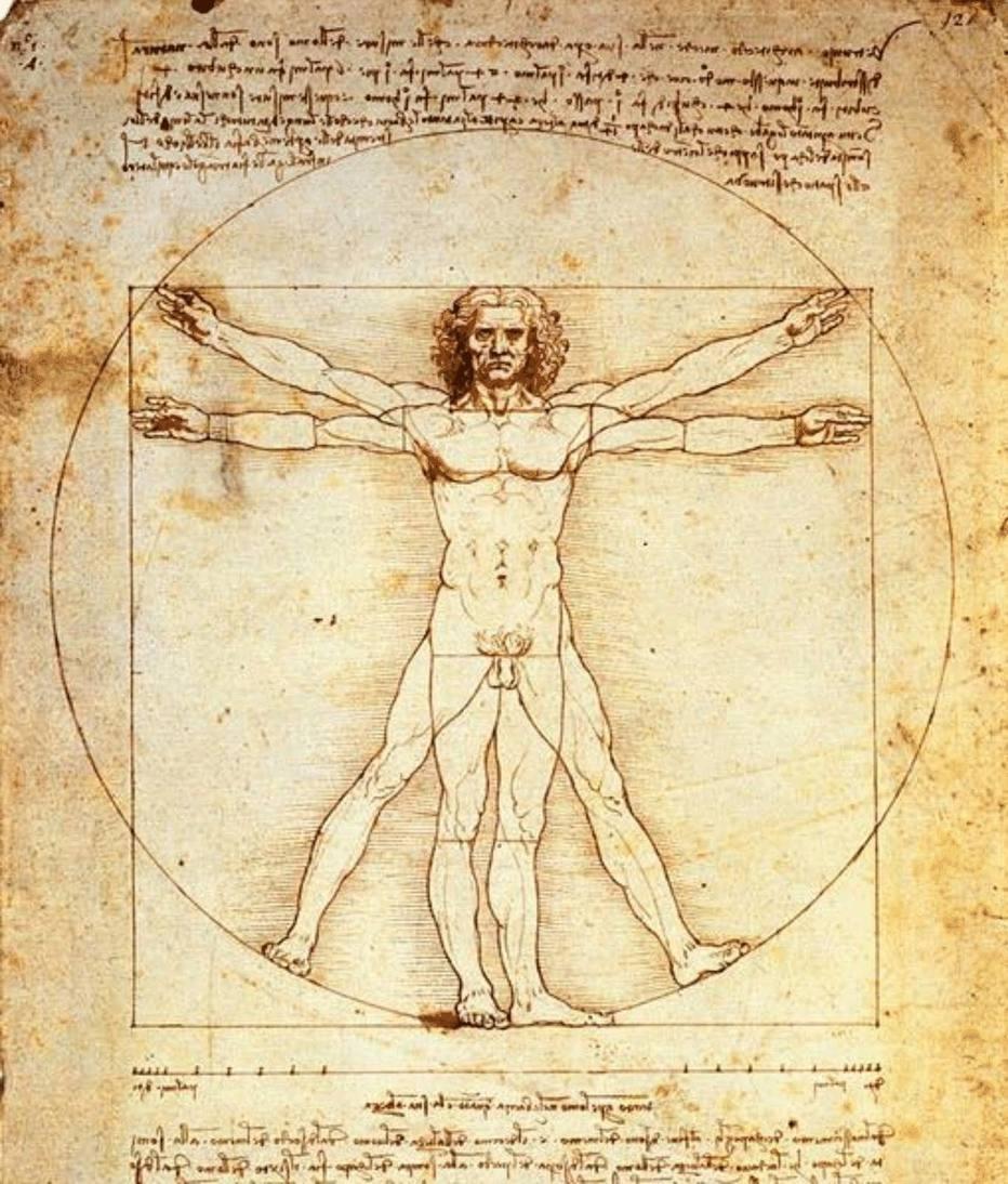 simetria-assimetria-homem-vitruviano