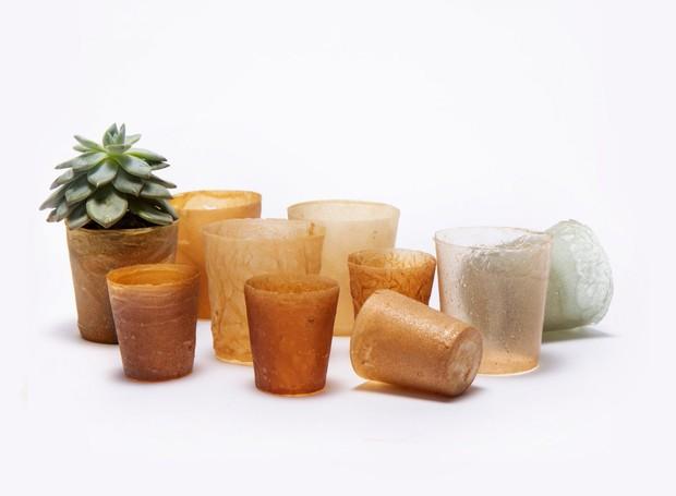 bioplastico de residuos de frutos do mar